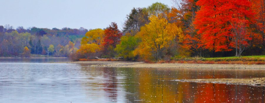 Peace Valley Saturation in Fall