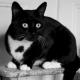 5 Day Black and White Photo Challenge